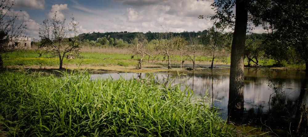 Skutki powodzi w gminie Wilków