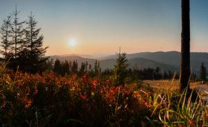 Beskid Śląski - widok ze szlaku na szczyt Skrzyczne