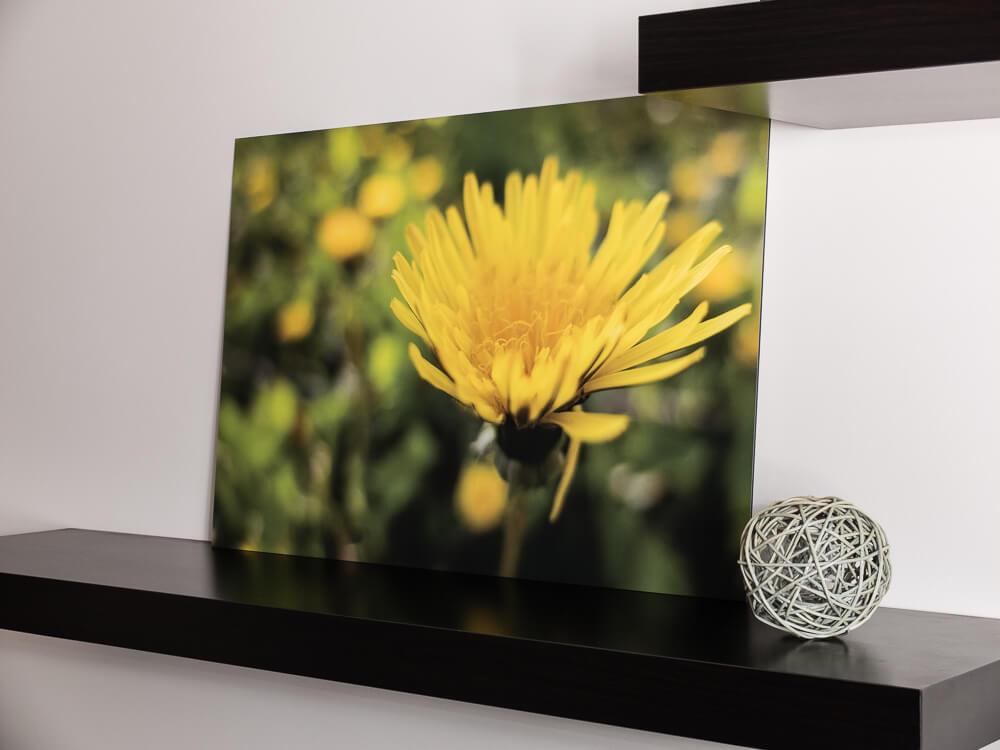 Fotoobraz – recenzja produktu od Saal Digital